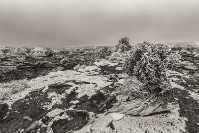 the Wedge, San Rafael swell in Black and white.