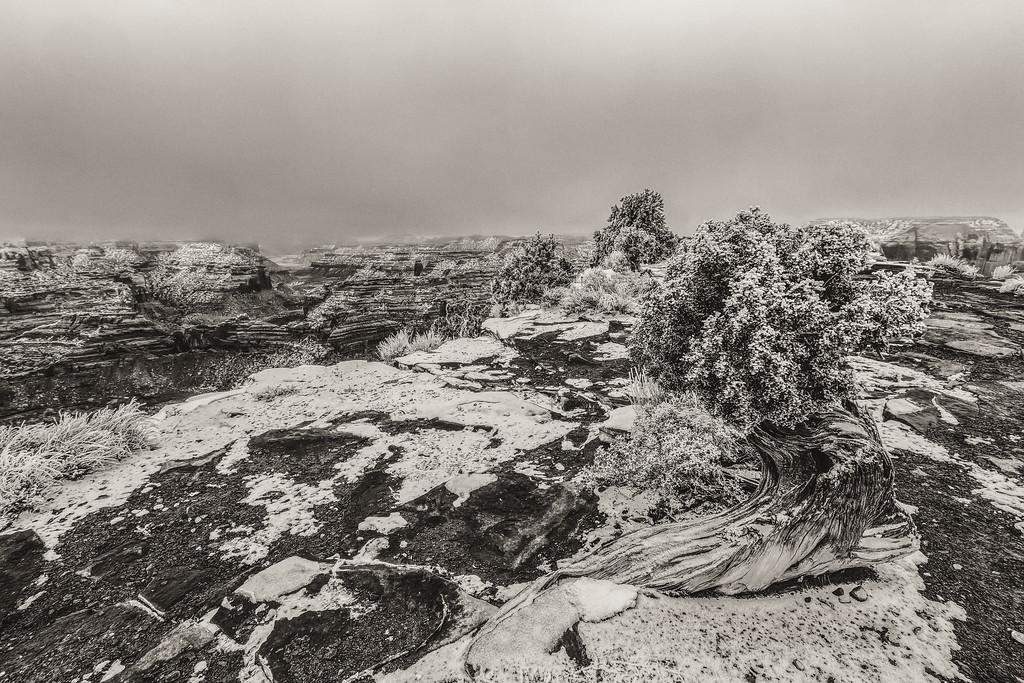 the Wedge, San Rafael swell in Black and white.