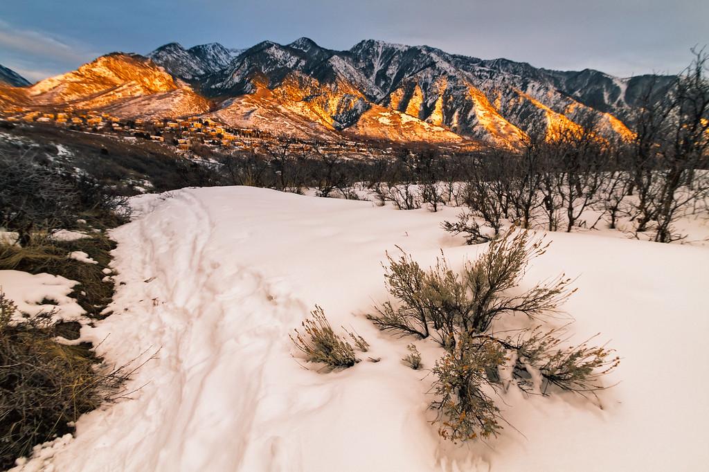 Lone Peak from Granite Park