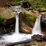 Creek below Uvas Canyon County Park Upper falls.  DSC_2741