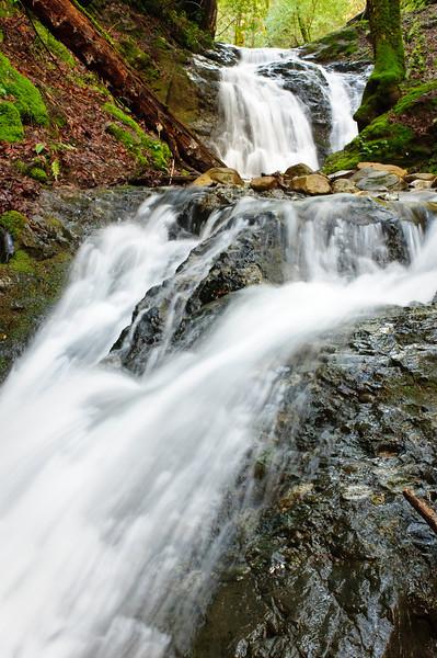 Uvas Canyon Creek Waterfalls DSC_2663