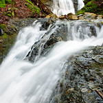 Uvas Canyon Creek Waterfalls DSC_2663