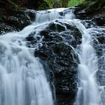 Uvas Canyon Creek Waterfalls DSC_2559