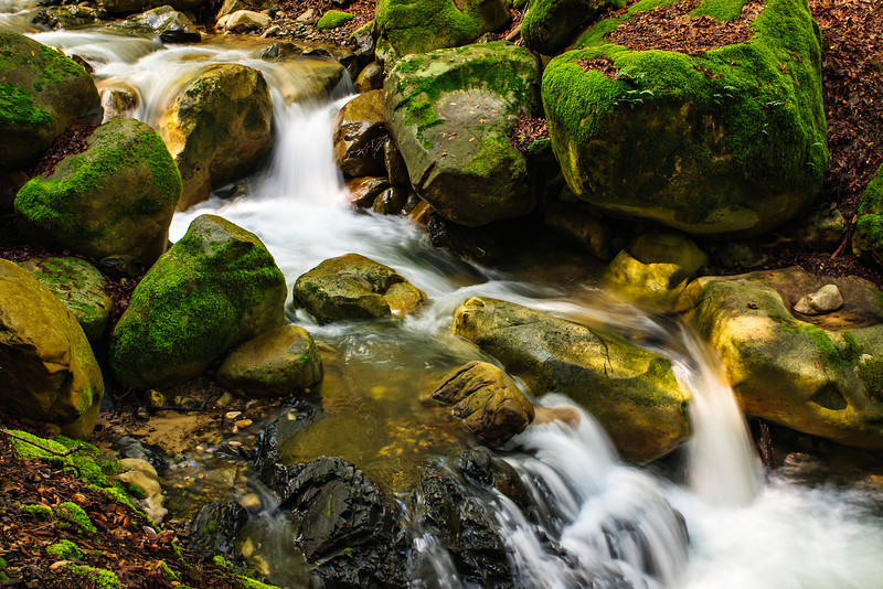 """""""Flowing Stream and Mossy Rocks"""" Lovely green ferns and moss everywhere. I shot these just after a big rainfall in the spring. Uvas Canyon Creek Waterfalls in Santa Clara County near San Jose.  It looks like it could be a waterfall and stream from Oregon.  DSC_282"""