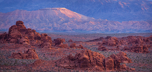 Valley of Fire and Gold Butte Panorama in Nevada's Mojave Desert