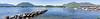 16  Tofino Panorama 2