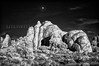 Moon Over Rocks, Arches NP