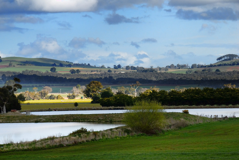 Hills around Newlyn / Creswick Victoria