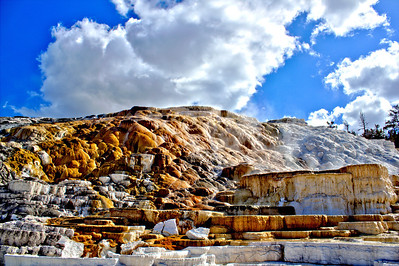 Mammoth Springs - Yellowstone