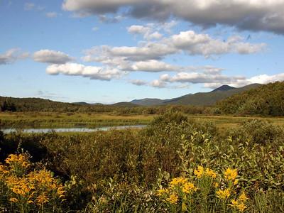 The Adirondacks, near Saranac Lake, NY.  August 2006