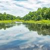Tenafly Nature Center, NJ - June 2018