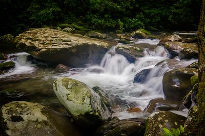 Porters Creek Trail