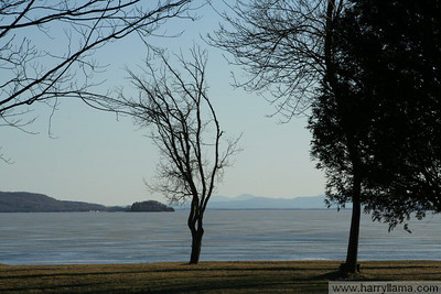 Bare trees and frozen water at St. Albans Bay. Lake Champlain and the Adirondacks in the background.