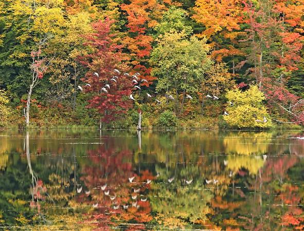 Vermont 2012