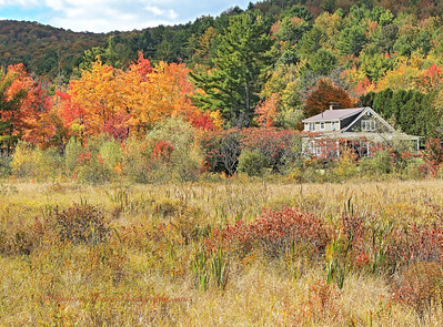 """This may be my """"Kincaid House"""" for this year. I try to find a really nice setting and this is at the top of my list. We had to drive down a small dirt road behind the property to get the angle."""