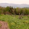 Farm track in Vermont