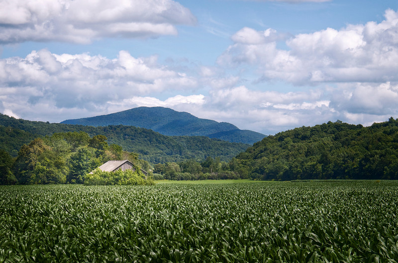 Green field with mountains in the distance in rural Vermont