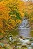 Vermont, Stowe, Foliage, Fall Colors, Landscape, 佛蒙特, 秋色 风景
