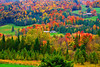 Vermont, Newport, Foliage, Fall Colors, Landscape, 佛蒙特, 秋色 风景
