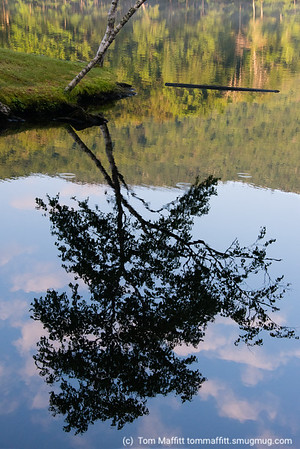 """Morning Reflections,"" Lake Mansfield Trout Club, Stowe, Vemont"