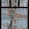 """Window to Winter"""