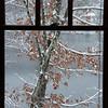 """Window to Winter"""