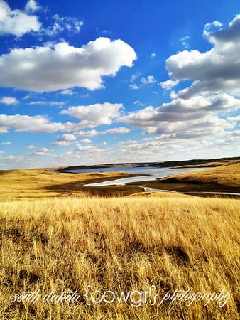 A view of Parker Creek