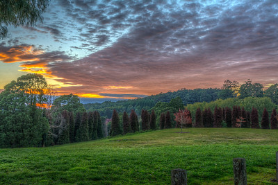 Fire Sky - RJ Hamer Forest Arboretum