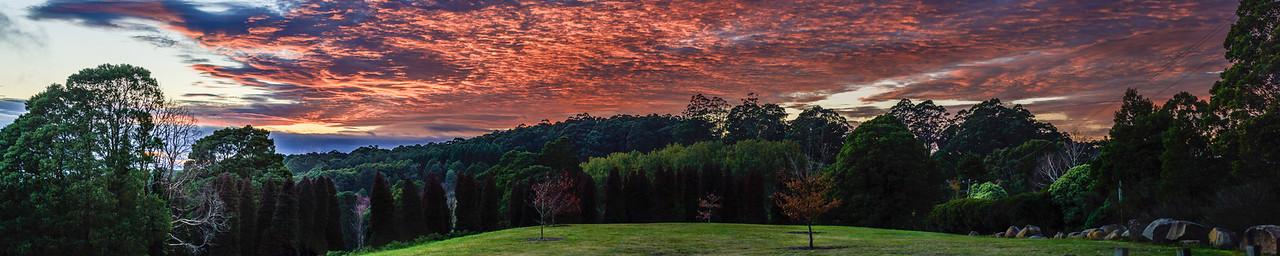 RJ Hamer Arboretum - Sunrise - Olinda