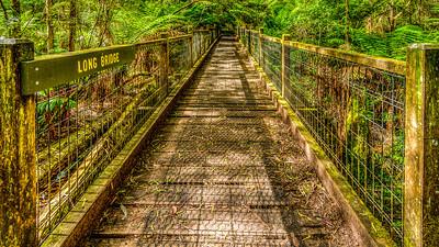 Long Bridge - Sherbrooke Forest