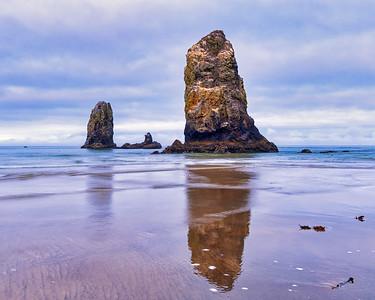 Sea stacks on the Oregon Coast, Oswald State Park.