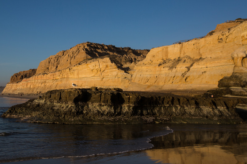 Winter at the Torrey Pines State Beach