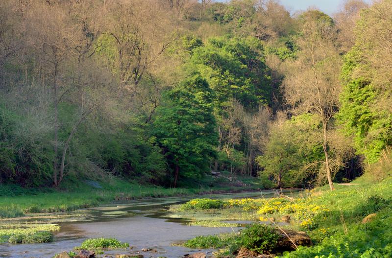 River Bradford near Youlgrave, Derbyshire UK.  Late April.