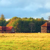 Barns in a Field near Preston, Hertfordshire.