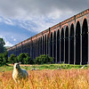 Welland Viaduct in Northamptonshire, it's nearly a mile long, this is just a tiny bit of it.