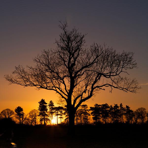 sunset over sutton