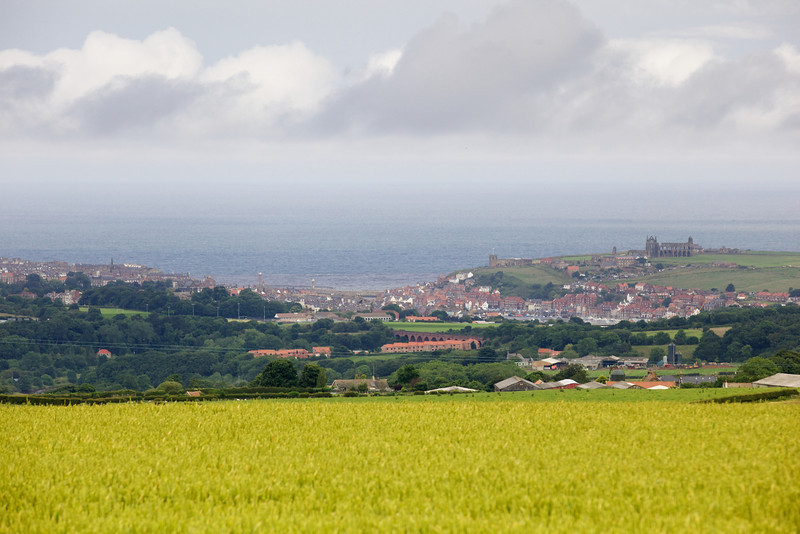 view to whitby