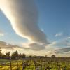Vineyard and Lenticular Cloud