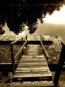 Dock Sepia