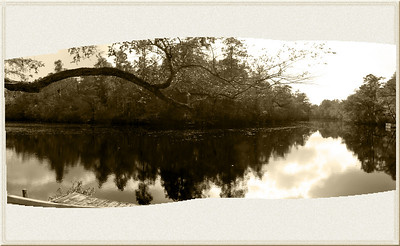 Holland's Shelter Creek Sepia