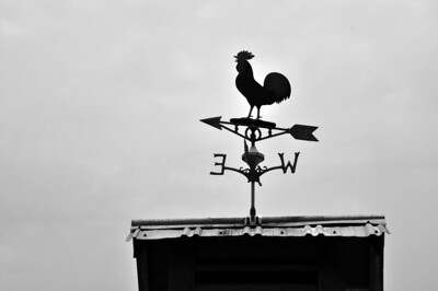 Weather Vane 1 B&W