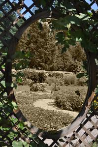 Biltmore Gardens Sepia