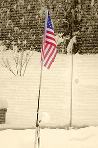 Viet Nam Memorial Flag Sepia