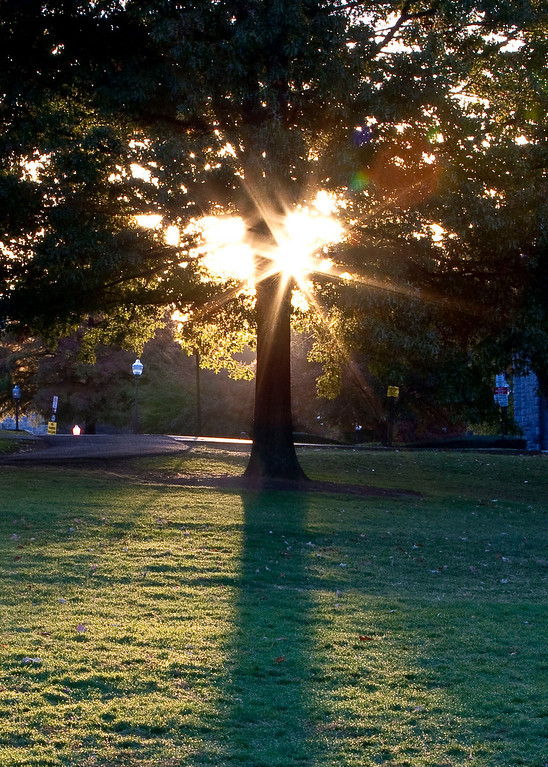 Early morning sunlight over the east end of the Drill Field.