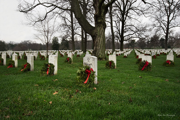 Wreaths at Arlington National Cemetery