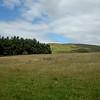 Breamish Valley, North Northumberland