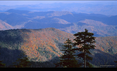 Autumn View - Clingmon's Dome, Great Smoky Mountains  (AP-0330)