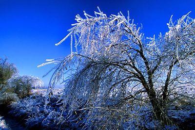 Oklahoma Icestorm 2  (J005)