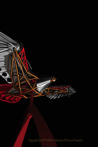 Yarrow Hawk 2_0008