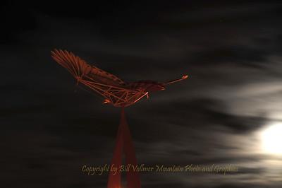 Hawk and Moon - BV